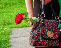 foto  A red rose out of the bag